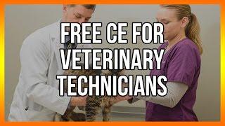 Free CE for veterinary technicians