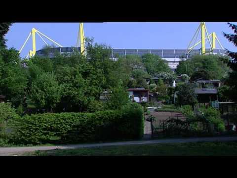 Andy Schade - Am Borsigplatz Geboren