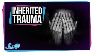 Can Trauma Be Inherited?