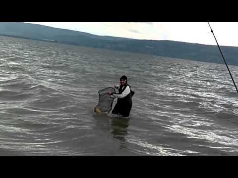 где в израиле ловят рыбу