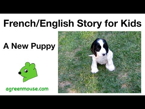 French english Story For Kids: A New Puppy video