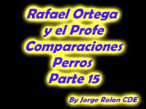 15 Rafael Ortega El Cabezon y El Profe - Comparaciones - Perros del rico y el pobre