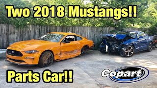 Rebuilding My Totaled Wrecked 2018 Ford Mustang GT Part 1 From Copart Salvage Auction