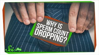 Why Is Sperm Count Dropping?