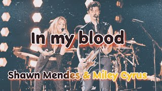 Shawn Mendes & Miley Cyrus performance - in my blood