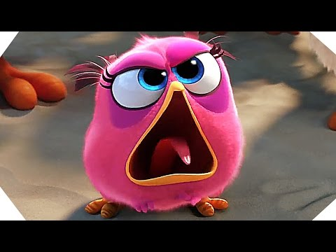 THE ANGRY BIRDS Movie NEW Trailer (2016 - Animated Film)