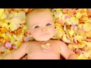 Baby Love: An Affectionate Miscellany by Rachael Hale Video