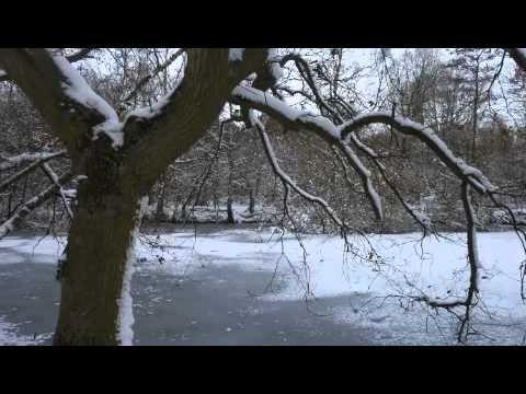 Stina Nordenstam - Winter Killing