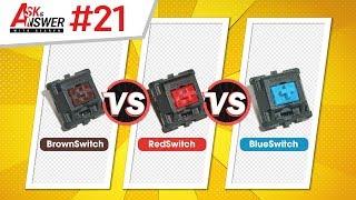Các loại Switch bàn phím khác nhau điểm gì? Dựng VGA có khiến giảm hiệu năng? | Ask and Answer #21