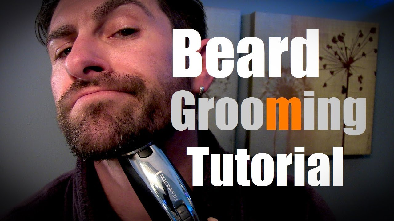 how to groom and shave your beard globezhair. Black Bedroom Furniture Sets. Home Design Ideas