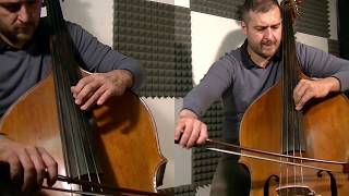 Game Of Thrones Theme - Double Bass Solo