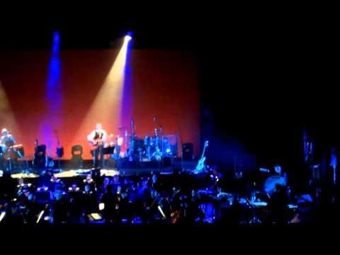 Asaf Avidan And The Mojos - Of Scorpions Bells