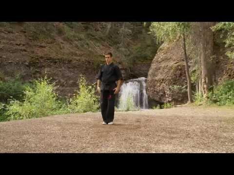 Kenpo Karate - Long Form 1