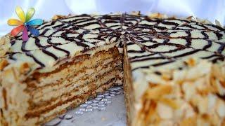 Неделя знаменитых тортов со всего мира: торт Эстерхази! – Все буде добре. Выпуск 726 от 22.12.15