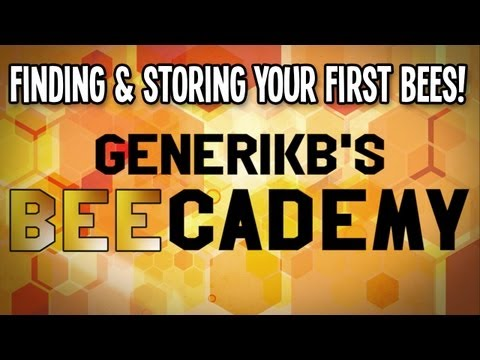 Generikb's BEEcademy Bee Tutorial 01 -