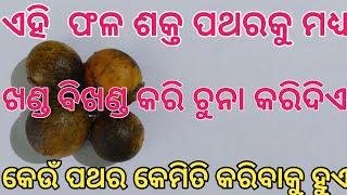 #TECBIGYAN  Kendu fruit | Kidney stone | Kidney stone pain | Kidney infection | Kidney pain