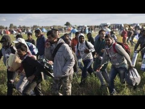 Refugee security concerns around the world raise questions