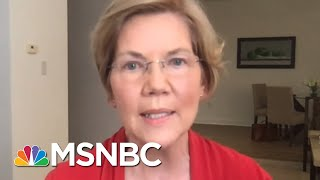 Sen. Warren: Americans Suffering From Lack Of Federal Leadership | Rachel Maddow | MSNBC