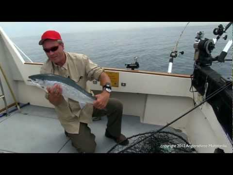 Wilderness Fishing 2012 - Rainbow Trout, Lake Ontario
