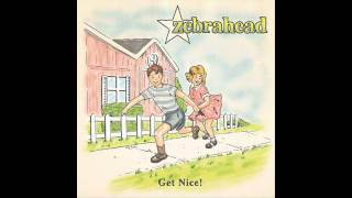 Watch Zebrahead This Is Gonna Hurt You Way More Than Its Gonna Hurt Me video