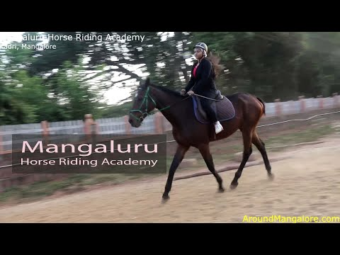 0 - Mangaluru Horse Riding Academy - Kadri