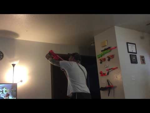 First ever recorded bee kill with nerf gun
