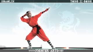 Shaolin Tong Zi Gong
