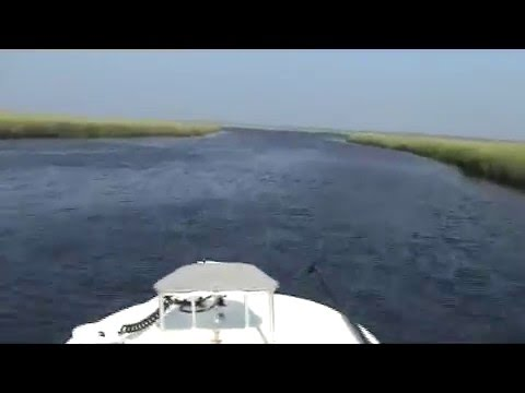 Wrightsville Beach Fishing Charters, Flats Boat Video