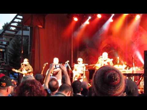 Canto A Veracruz - Los Lobos live! @ Surrey Fusion Festival