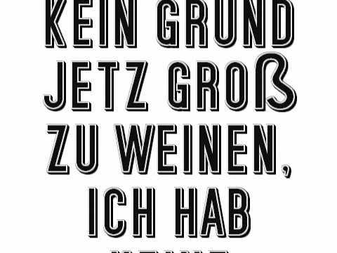 Die Toten Hosen - Lebt Wohl & Danke Sehr