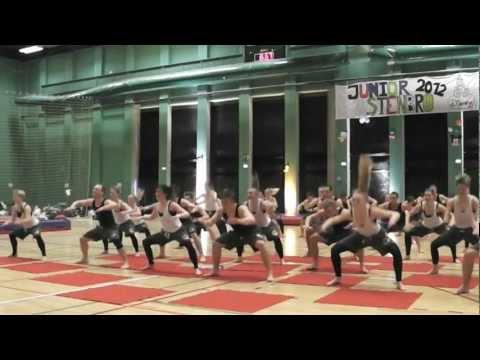 Copenhagen Gym Team, Costa Rica 2012 - Trailer