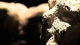Exposition : les sculptures d'Yukichi Inoué à Guyancourt