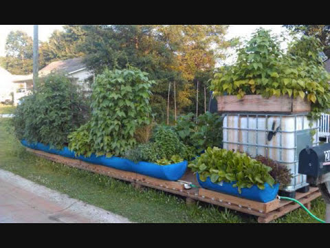 Why The Rain Gutter Grow System Is Like No Other Gardening System In The World!