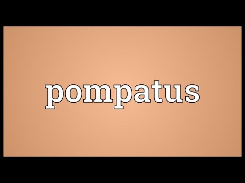 Pompatus Meaning