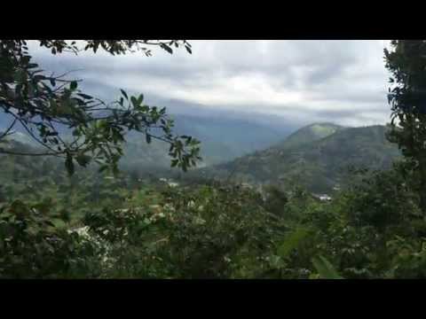 Twin's climate and environment work in Uganda