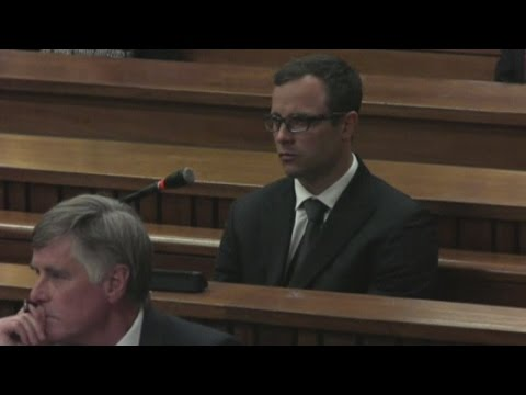 Oscar Pistorius trial: Prosecution and defence closing arguments