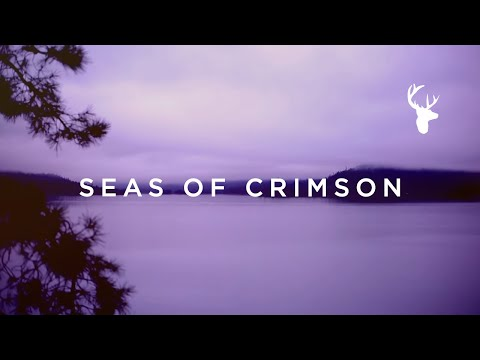 Seas of Crimson // Brian Johnson // We Will Not Be Shaken Official Lyric Video
