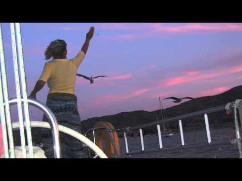 Vacanze in Barca a Vela – Isola d'Elba – Aria di Mare
