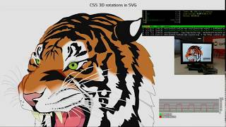 WPE SVG Transformations and Hardware Acceleration