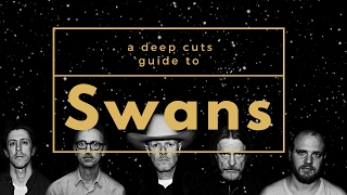 A Guide to SWANS