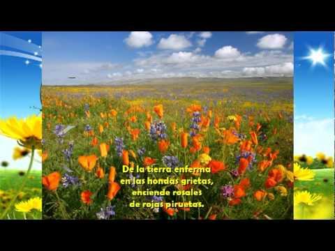 Antonio machado poemas cortos yahoo dating 8