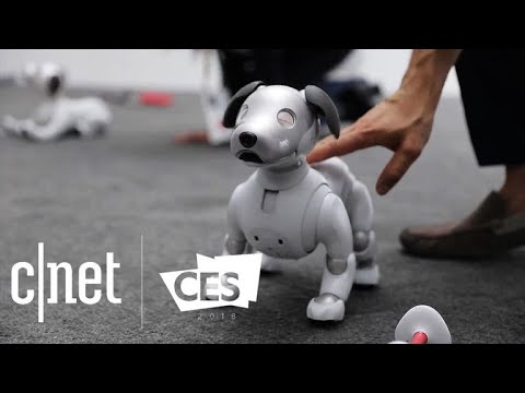 CNET's best tech of CES 2018