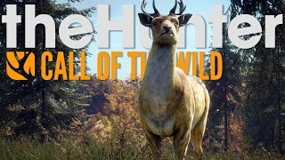 theHunter Call of the Wild - Nature is Beautiful - Layton Lake - The Hunter COTW Gameplay Highlights