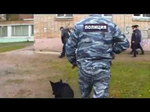 Десна-ТВ: День за днём от 14.11.2016