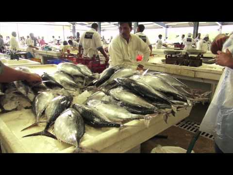 Health Benefits of Eating Fresh Fish