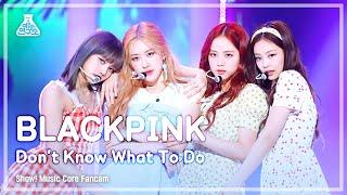 [예능연구소 직캠] BLACKPINK - Don't Know What To Do,블랙핑크 - Don't Know What To Do @Show! Music Core 20190406