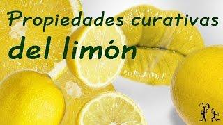 El limon sus propiedades curativas. Propiedades y beneficios del limón.