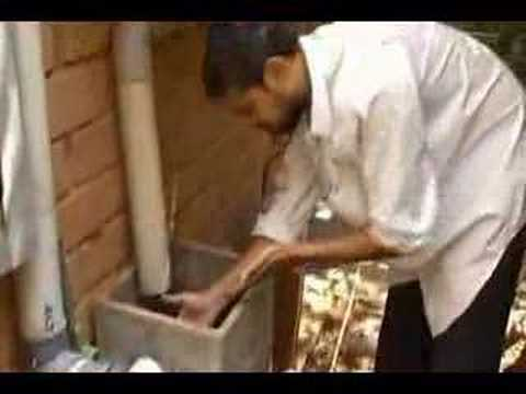 Harvesting rain - an urban rainwater system, Bangalore,India.