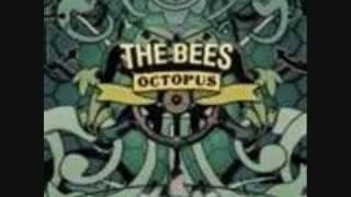 Watch Bees Got To Let Go video