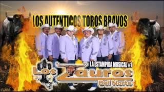 download lagu La Chica 2-40- Los Tauros Del Norte gratis